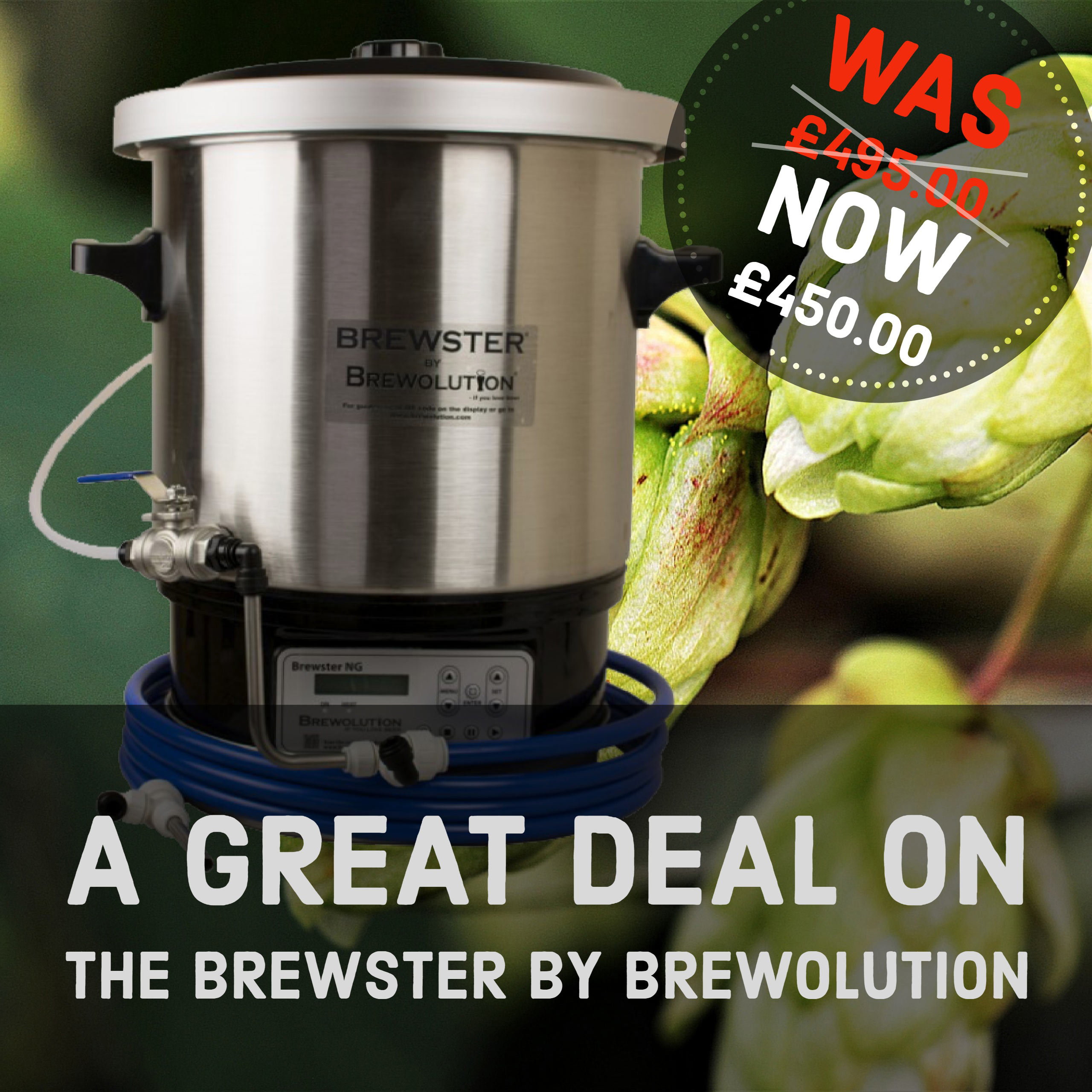 brewster-special