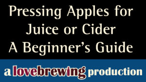 Pressing-Apples-for-juice-or-cider