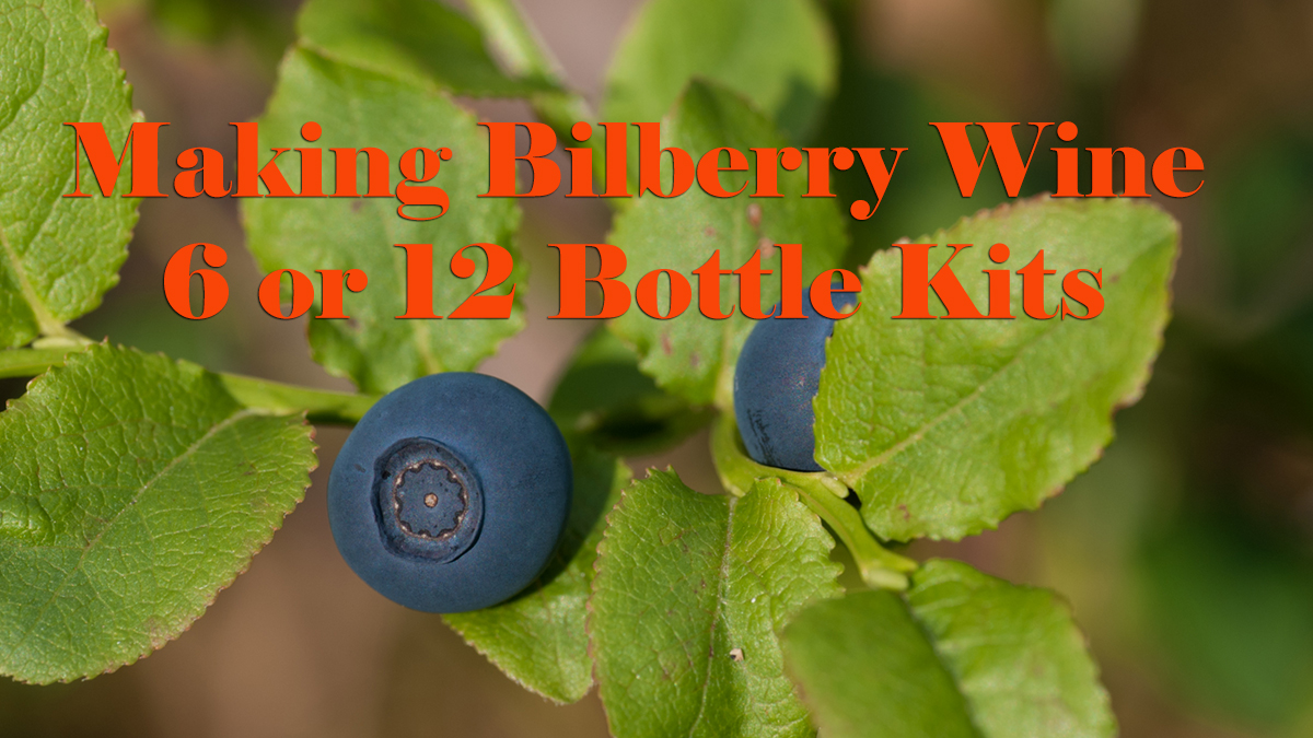 bilberry-wine-recipe