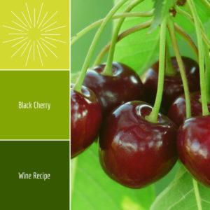 black-cherry-wine-recipe