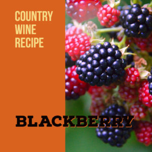 blackberry-wine-recipe