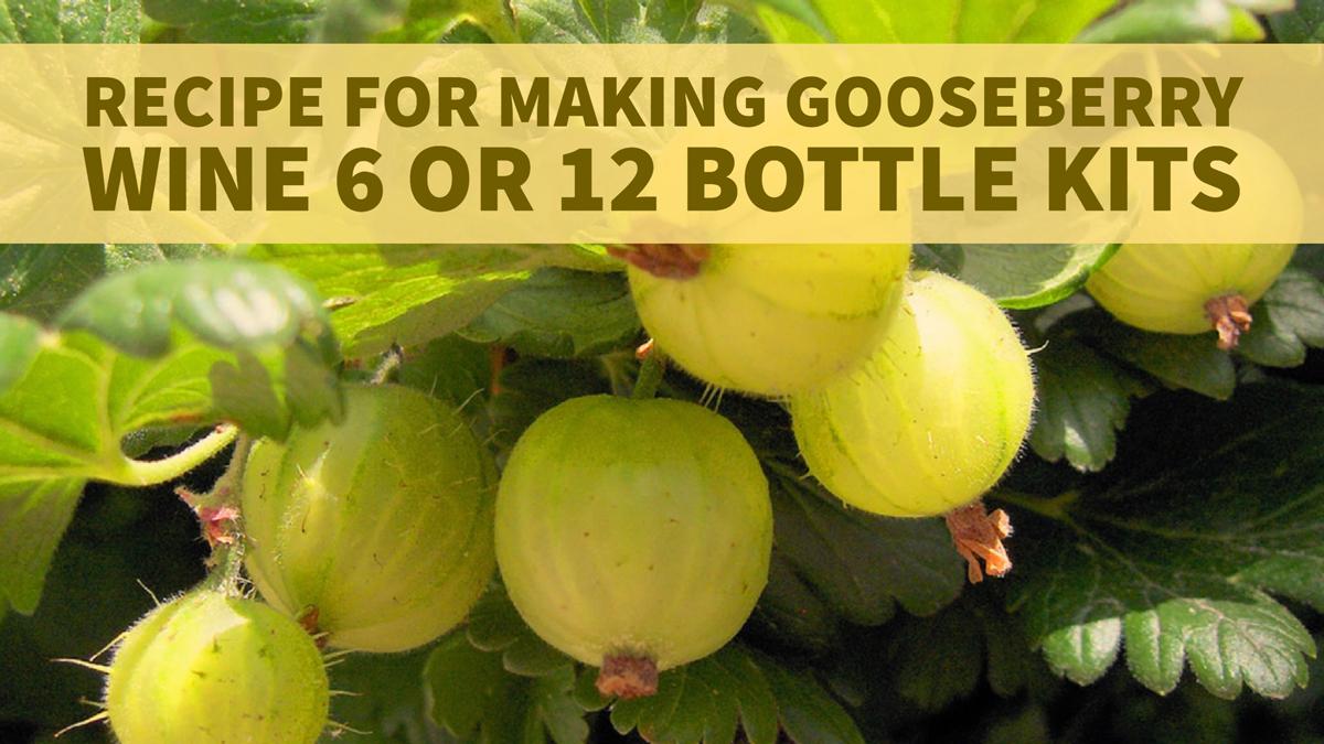 gooseberry-wine-recipe