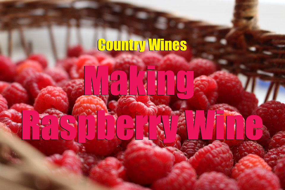 making-raspberry-wine