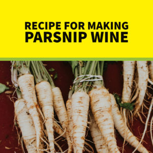 parsnip-wine-recipe
