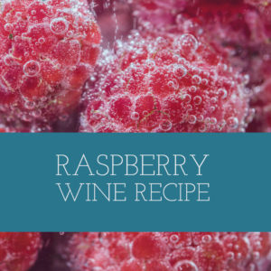 raspberry-wine-recipe