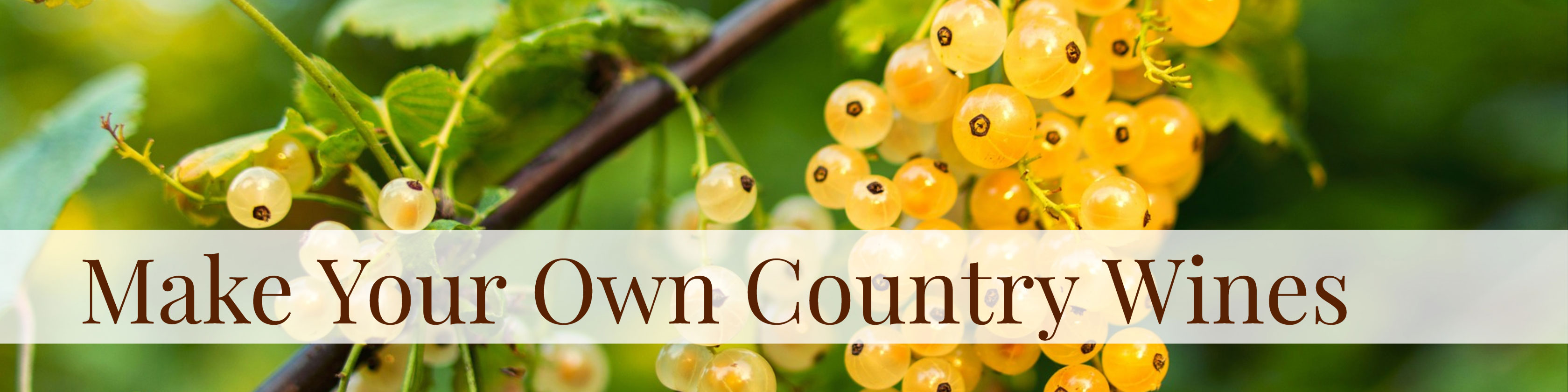 make-your-own-country-wines