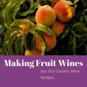 making-fruit-wines